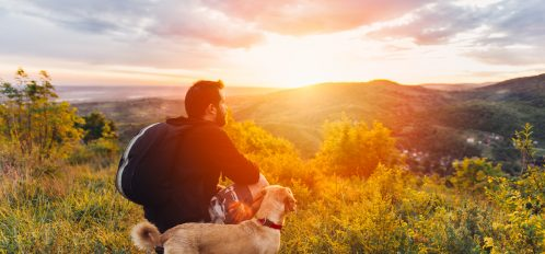 hiking-with-your-dog.jpg